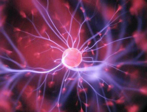 レビュー:Newtonライト2.0『心理学』